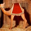 Mother Camel Left
