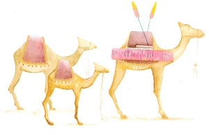 Camels Illustration